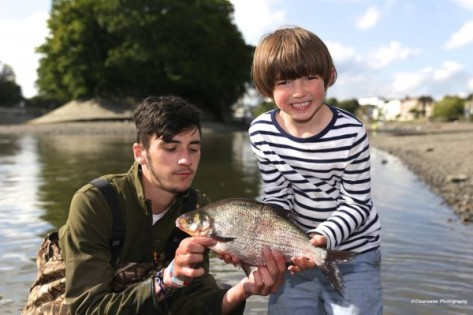 kid bream